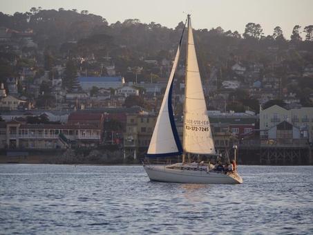Sail Monterey
