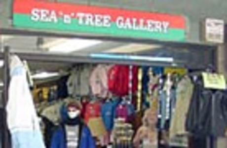 Ocean Front / Sea & Tree Gallery